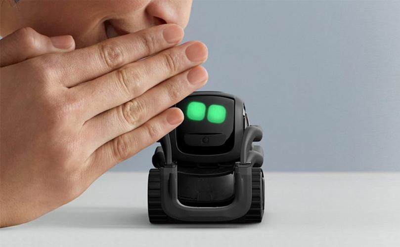 ank vector robot